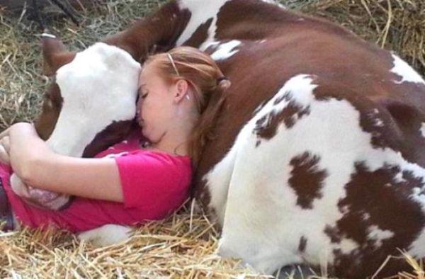 animal-hugs-12