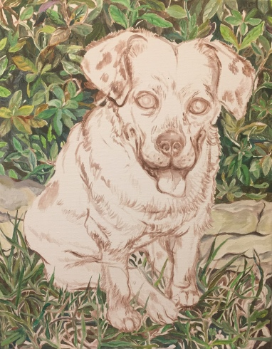 Painting azaleas and grassy lawn with low stone wall as backdrop for Riley's portrait, 11 x 14 inches, acrylic on canvas, September 2018