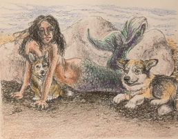 Mermaid with corgis