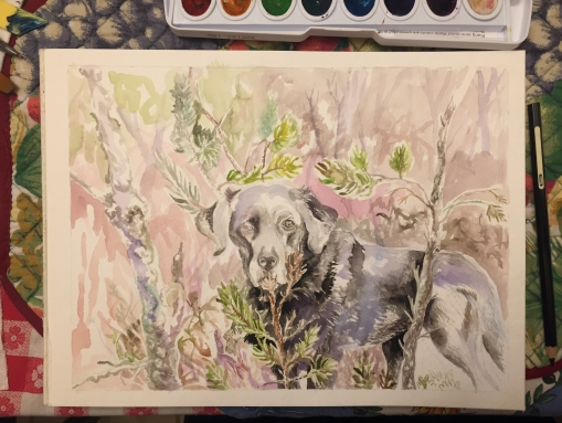 Watercolor of Piki in the forest, 9 x 12 inches, December 2019-January 2020